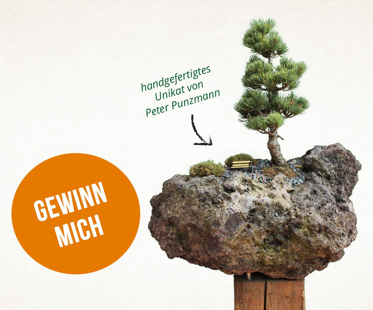 Garten Punzmann Lädt Ein Zum Tag Der Offenen Tür Am 12 13 Mai